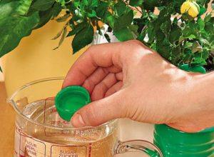 Бальзам для растений