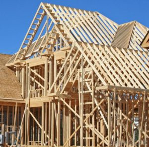 Экологичность строительства из дерева