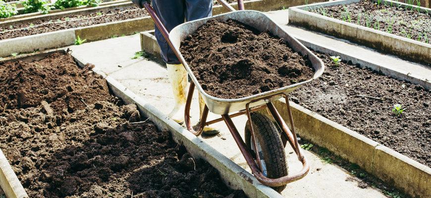 Как улучшить почву под огород