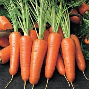 Как вырастить вкусную морковь?