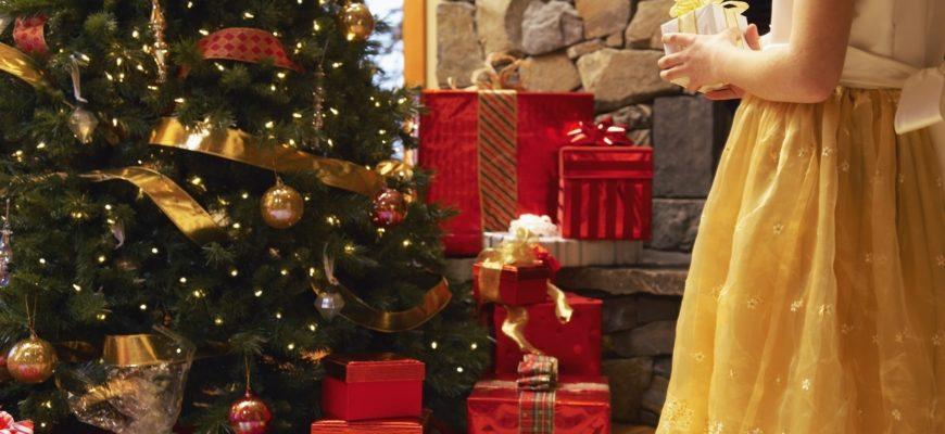 Встречая Новый год и Рождество