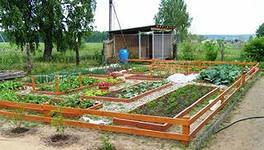 Время обработки почвы в огороде