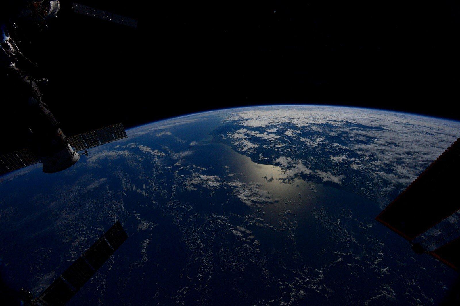 цветок фото земли из космоса американским астронавтом восстановления
