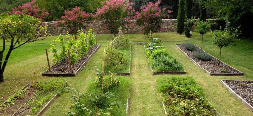 У вас будет красивый огород