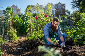 Вопросы садоводства