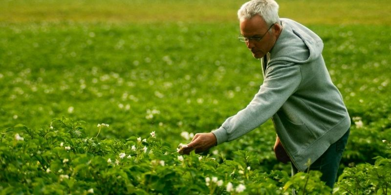 Агроном: кто такой и описание профессии. Плюсы и минусы