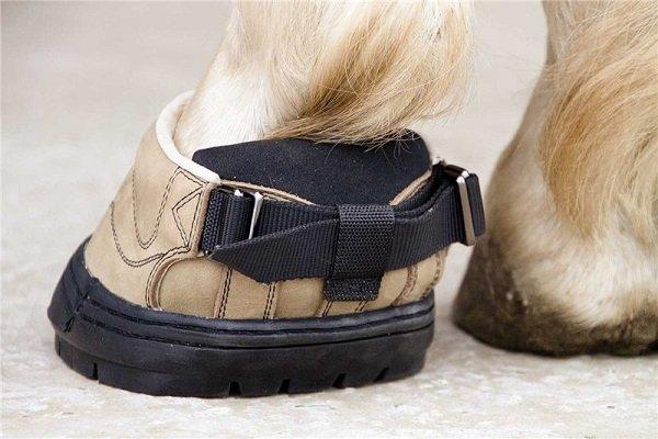 Что такое лошадиные ботинки, и как ими правильно пользоваться?