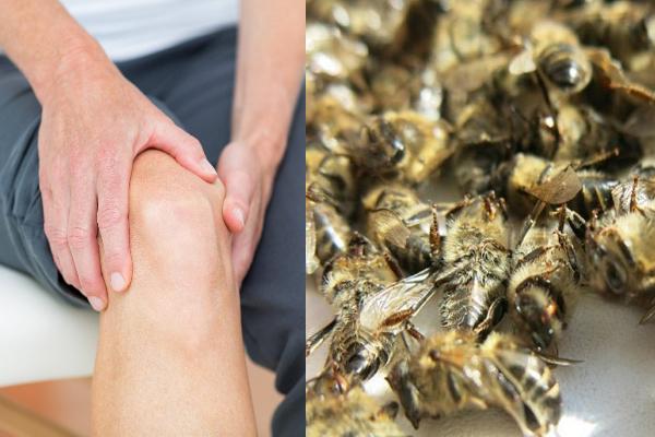 Как приготовить пчелиный подмор для суставов в домашних условиях?