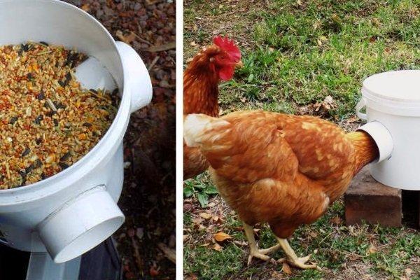 Как самостоятельно сделать кормушку для кур?