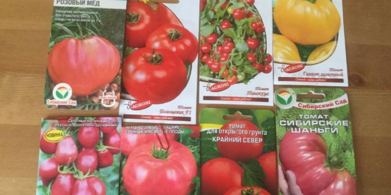 Какие семена овощей я купила в этом году и почему