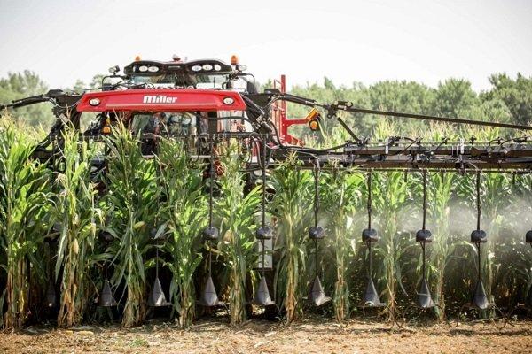 Какие удобрения лучше использовать для кукурузы? Сроки и способы их внесения