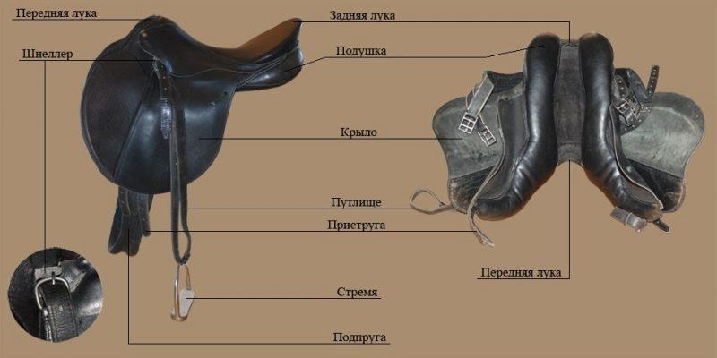 Какими бывают сёдла для лошадей? Как оседлать скакуна?