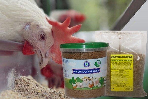 Костная и мясо костная мука – белковые добавки для кур