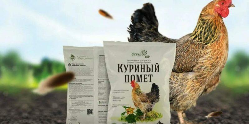 Куриный помёт для удобрения почвы: правила использования