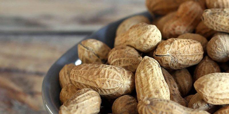 Любимый с детства арахис: польза и вред для организма человека: арахис женщинам, детям и мужчина каждый день.