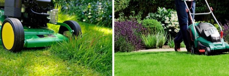 Рейтинг лучших газонокосилок. Какую модель выбрать?