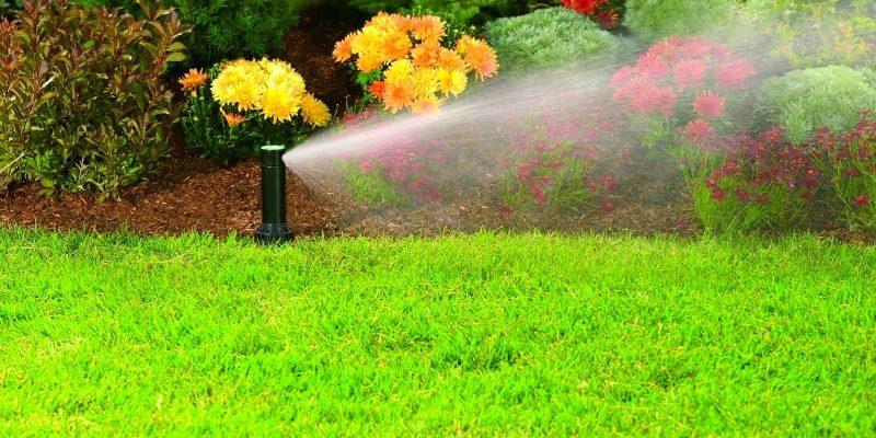 Система автоматического полива газона что включает