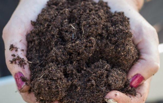 Удобрение почвы перегноем: свойства, правила внесения